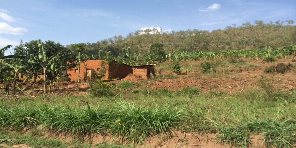 Warum Ruanda?